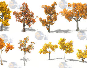 Colorful Tree Collection Pack Lowpoly 3D Model