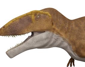 3D asset rigged Carcharodontosaurus sahricus
