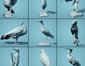 VR / AR ready Bird Collection V4 Low Poly Models