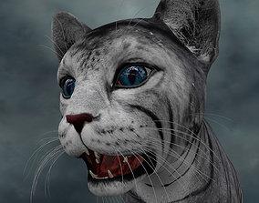 UVWC-013 Cat Textures Only 3D model cat