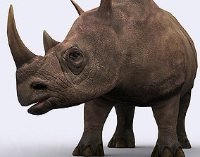 3DRT - Rhinoceros animated VR / AR ready