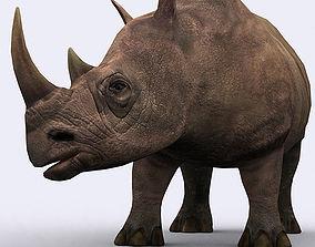3DRT - Rhinoceros animated VR / AR ready