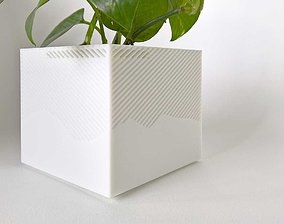 003f - Planter - Medium Cuboid With 3D printable model 1