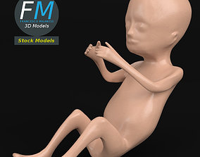 Stylized human fetus 3D