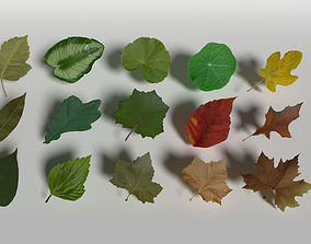 Lowpoly Leaves Pack 3D model
