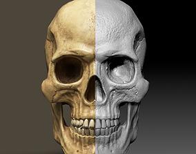 3D asset Skull Low Polly PBR