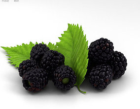 Blackberry 3D model