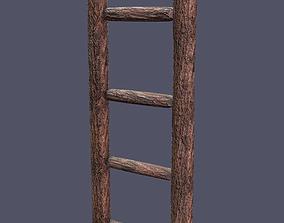 3D asset Muddy Ladder