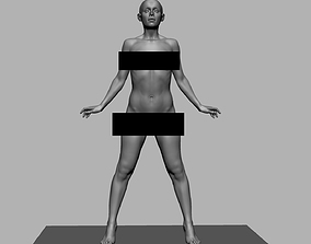 Female Anatomy v3 3D model