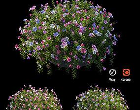 3D model Plant flower set 16