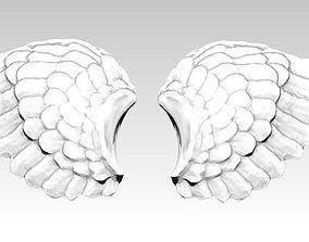 3D printable model Wings pair Detailed