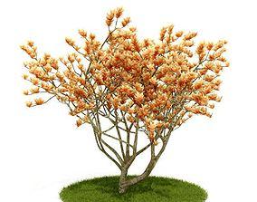3D Flowering Golden Tree