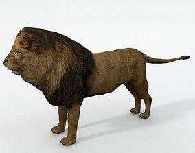 3D asset Lion Safari