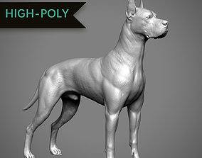 3D printable model Great Dane High-Poly