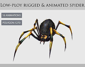 spider araneid arachnid animation 3D asset animated