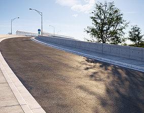 3D model Natural looking asphalt road texture