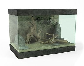 3D model House Lizard Tank