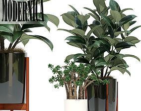3D Plants collection 72 Modernica pots