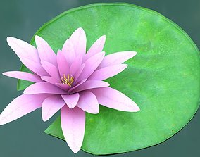 Water Lily Pad 3D model