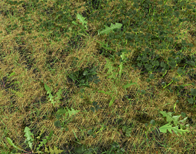 Fig Buttercup Meadow Patch 3D model