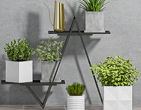 3D model Decorative plant set-69