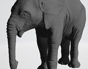 elephant-natural-history-museum-1 3D printable model