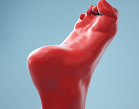 Claw Foot Realistic Foot Model 06 3D
