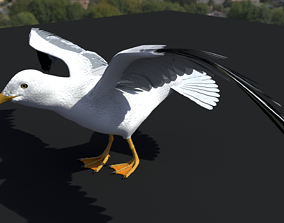 SEAGULL 3D rigged