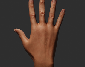 Female Right Hand 3D