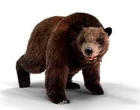 Fur Brown Bear animated 3D