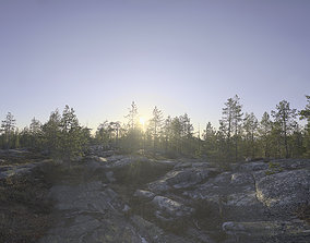 Nature HDRI - Midsummer Rock 3D model