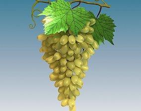 Grapes Cluster Green 3D model