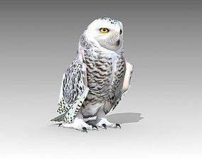 3D asset Snowy Owl