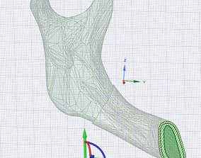 mandible 3D model
