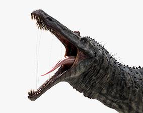 Suchomimus tenerensis 3D model