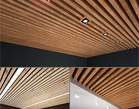 Wooden Ceiling Set 5 3D