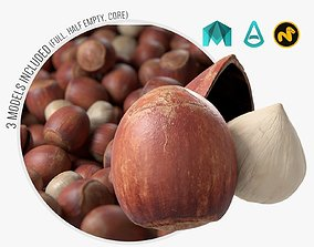 3D model Hazelnut