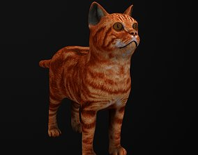 Cat 3D model game-ready