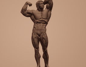 Arnold Schwarzenegger 3D Model for 3D Printed in STL