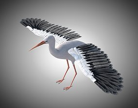 Stork Bird Rigged 3D model low-poly