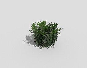 3D model VR / AR ready Low poly Plant ready