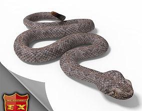 3D model Rattlesnake pose 2