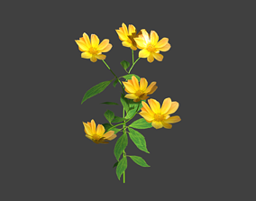 3D model Flowers pack