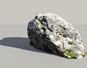 Lichen Covered Rock 3D Scanned Model scanned