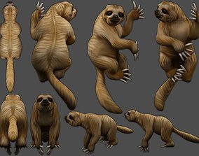 3D model rigged game-ready sloth