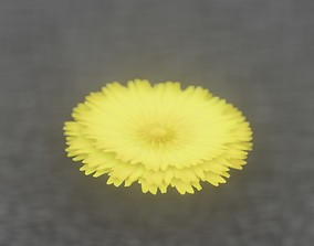 Dandelion Flower Blossom Version 7 - Object 38 3D model