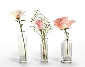 3D model Glass Vases With Flowers