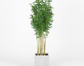 Bambus Muriel Square Large Planter 3D