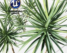 Realistic Plants 18 - UE4 Asset and FBX Files 3D model
