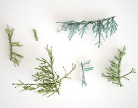 3D model Pinetree Branches